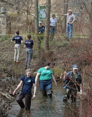 Students with Mercyhurst University's Applied Forensic Sciences department search Cascade Creek in Frontier Park in Erie on April 18, 2019, for additional human remains after a skull and other bones were first found during a park cleanup 12 days earlier. Erie County Coroner Lyell Cook announced on Wednesday that DNA testing done on some of the remains in Texas determined that they are of 44-year-old Matthew Cecelich, who had lived in Erie at one time.