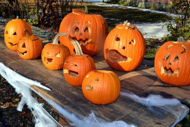 Some of the carved pumpkins Lancaster residents submitted for a contest on Halloween.