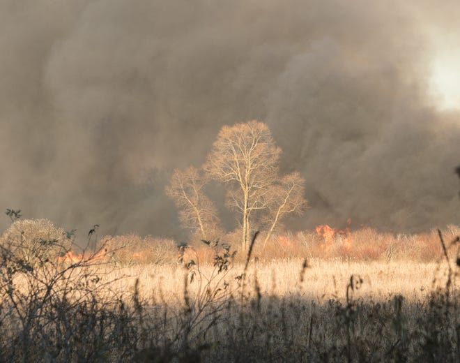 A massive field fire burns east of Gregory Road north of Allen Road in Conway Township Wednesday, Nov. 4, 2020.