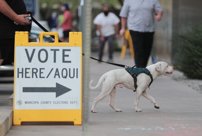 A voter brings his dog to the voting polls at the Burton Barr Library in Phoenix on Election Day.