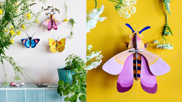 Best DIY gifts: 3-D DIY Decorative Insects