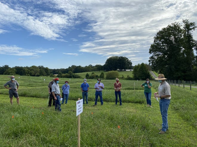 Participants at a recent N.C. Cooperative Extension field day event.