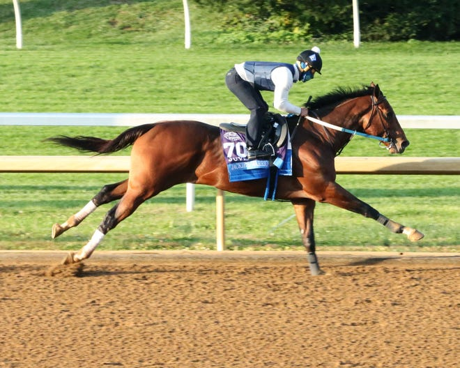 Trained by Steve Asmussen, Jackie's Warrior is the 7-5 morning-line favorite for Friday's Breeders' Cup Juvenile at Keeneland.