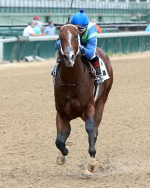 El Paso owned Jackie's Warrior is the 7-5 morning-line favorite for the Breeders' Cup Juvenile on Friday in Kentucky.
