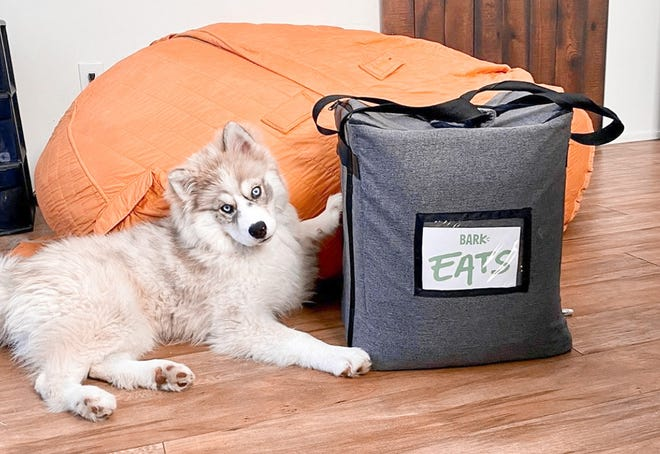 BarkEats delivers the perfect meals for your canine companions.