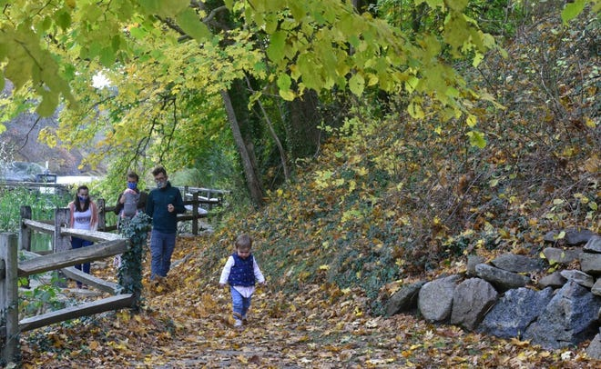 Two year old Penelope Coimhra leads the way during a family outing surrounded by foliage at the Brewster Grist Mill.