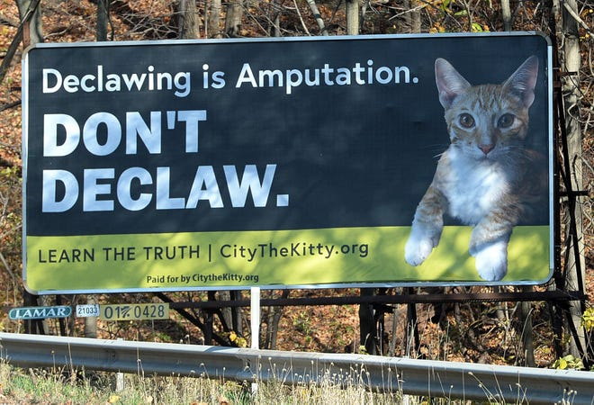 A billboard on Route 20 in Fairview Township, which was paid for by www.CitytheKitty.org, is aimed at getting local shelters to stop declawing cats.