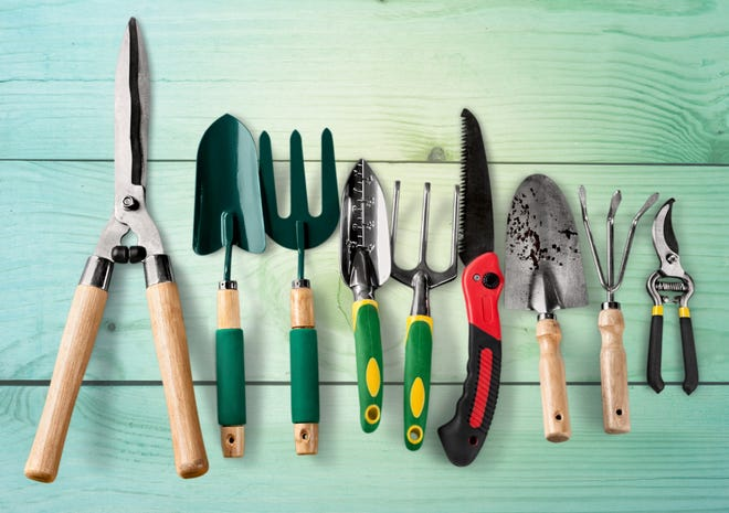 Cleaning and disinfecting your gardening tools now will give you a head start in the spring.
