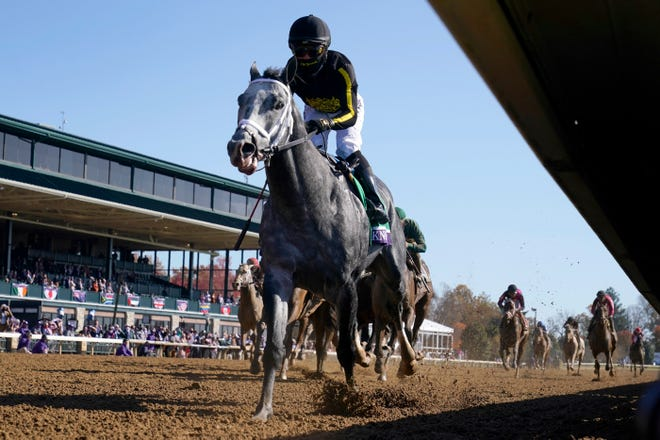 Joel Rosario rides Knicks Go to win the Breeders' Cup Dirt Mile horse race at Keeneland Race Course, in Lexington, Kentucky, Saturday, Nov. 7, 2020.