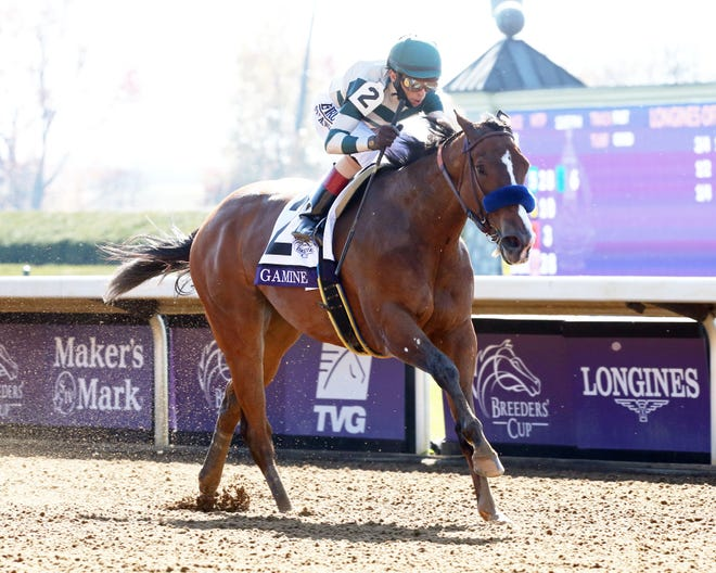 Gamine and jockey John Velazquez win the Breeders' Cup Filly & Mare Sprint on Saturday at Keeneland.