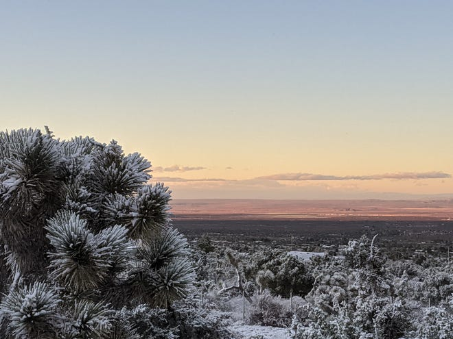 The first snowfall of the 2020 winter season blanketed local mountains and dusted parts of the High Desert on Saturday, Nov. 7, 2020, producing this scenic shot in Piñon Hills.