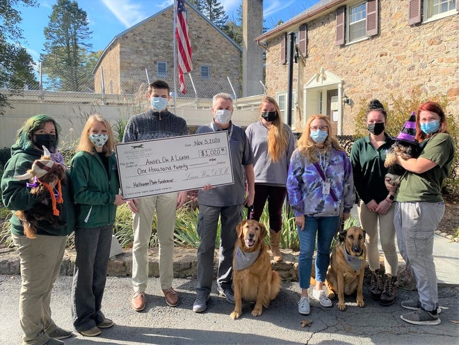 Holiday House Pet Resort and Training Center in Doylestown Township donated $1,020 to the nonprofit therapy dog organization Angel On A Leash. From left, Ro Riley with Cha Cha; Katie Metzler, general manager for Holiday House Pet Resort; Nate Weis; Bob Wharton, co-president of AOAL with Jackson; Olivia Bohrer; Cindy Kaeble of AOAL with Annie; Holly Moyer; and Alex Hendricks with Maggie.