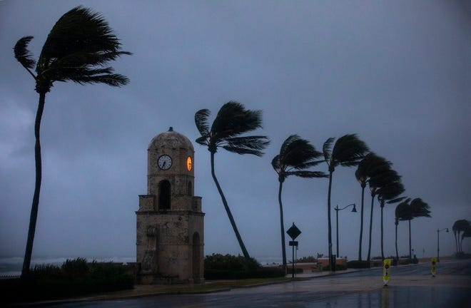 Wind from Tropical Storm Eta blows the palms along Midtown Beach on Monday morning.
