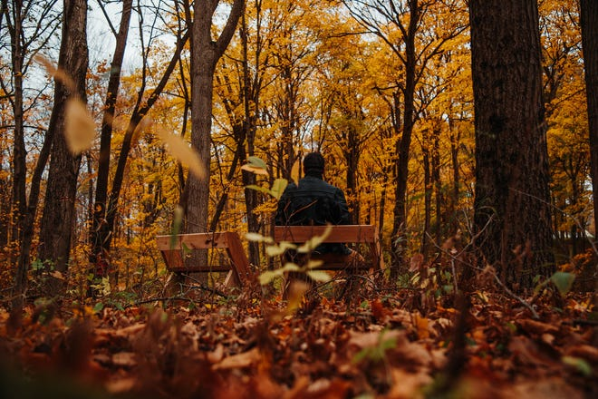 A person enjoys the meditation bench at Red-tail's Fall Creek Woods.