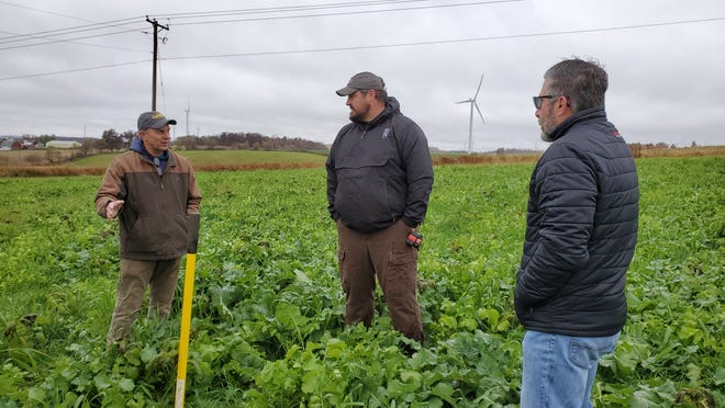 Clint Hodorff, center, talks about his eight-seed cover crop mix at a field day on Sept. 23 at his farm, Second Look Holsteins.