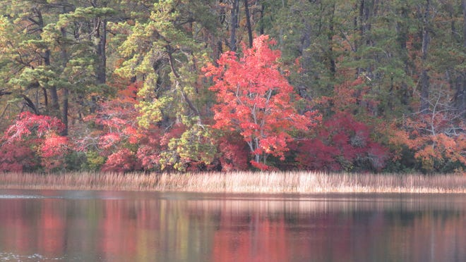 TRURO--(10/23/20)--Peaceful reflection at Great Pond.