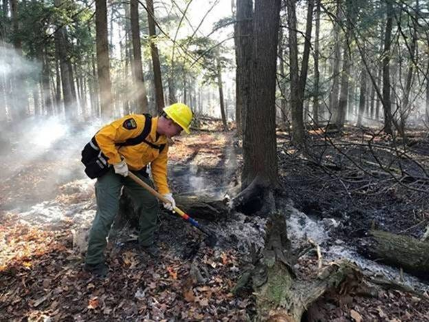 A DEC Forest Ranger responds to a fire at Ossian State Forest.