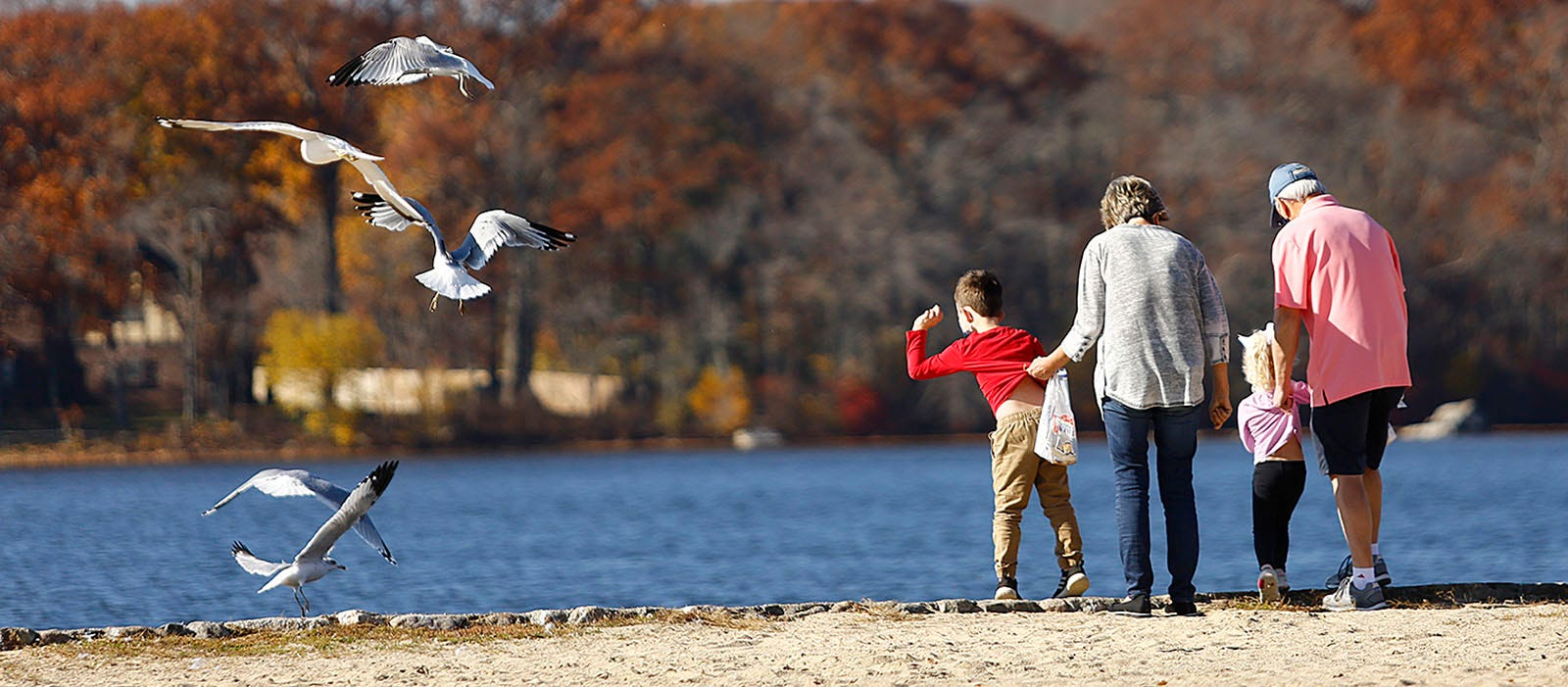 Siblings Jack, 5, and Emma, 3, Levangie feed birds with grandparents Denise and Richard Norris of Braintree at Sunset Lake on Tuesday, Nov. 10, 2020.