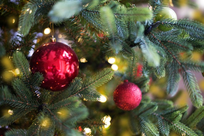 The Seabrook Recreation Department is spearheading an effort to provide free Christmas trees to families in need.