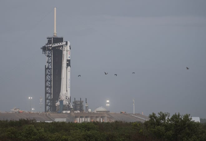 A SpaceX Falcon 9 rocket and Crew Dragon capsule for Crew-1 are seen at Kennedy Space Center's pad 39A after both were raised into the vertical position around 5:30 a.m. Tuesday, Nov. 10, 2020.