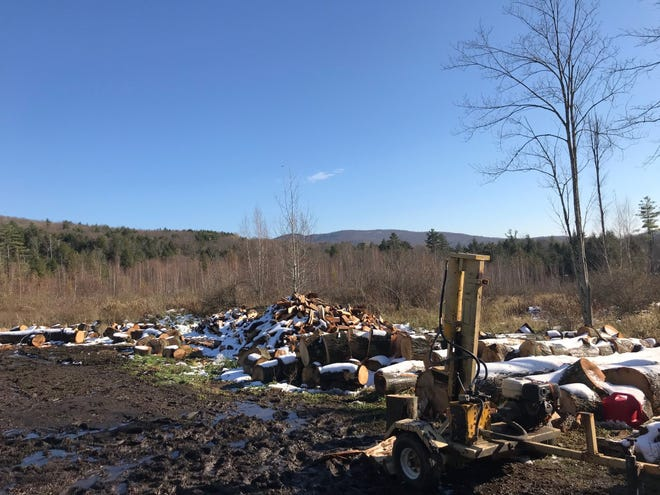 Wood for Good's woodlot on the Davis Farm in Jericho, Vermont, as seen on Nov. 4, 2020.