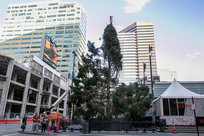 The tree at Fountain Square, in none of its Christmas glory.