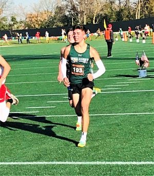 Fisher Catholic junior Patrick Kenney placed 17th at the Division III state cross cross country championships to earn All-Ohio honors.