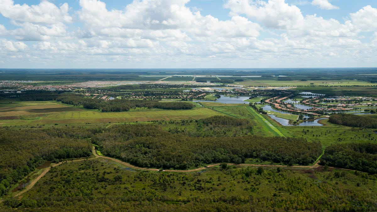 Guest opinion: Future of eastern Collier County comes down to 'planning wisely' 2