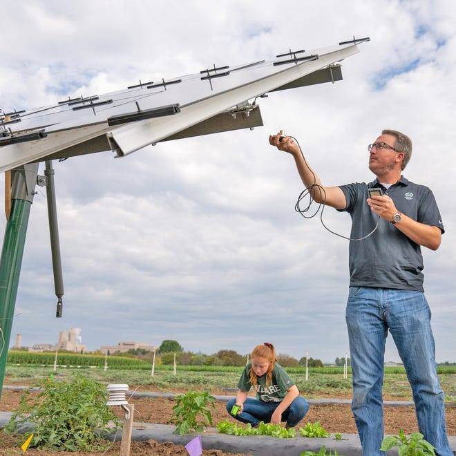 "Colorado State University Specialty Crops Program Coordinator Mark Uchanski was initially skeptical when Sandbox Solar approached him about researching the possibility of combining solar farming with high-value crops. ""Quite frankly, I said, this is a little bit crazy, but let's try it,"" he recalls. Three years of research now demonstrates several ways the panels and plantings benefit each other."