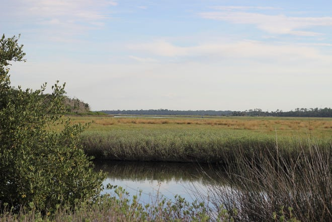 Salt marshes near Tomoka State Park can be seen from Old Dixie Highway on the Ormond Scenic Loop & Trail.