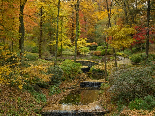 """Fall, with its gorgeous foliage, can be the perfect time to take up landscape photography. So can winter. This photo provided by The Monacelli Press shows a garden featured in the book """"Garden Portraits: Experiences of Natural Beauty,"""" by Larry Lederman."""