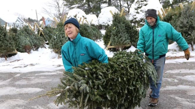 Ann and Richard Fortier of West Concord, Massachusetts, carry their Christmas tree to their car at Marshall Farm in West Concord on Wednesday, Dec. 4, 2019.