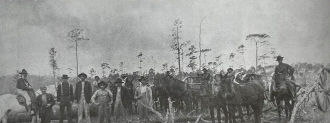 One of the first businesses in what is now Flagler County was logging and timber operations. This photo of a logging crew was taken in 1901 on the western side of the county. Dancy Miller, the World War I soldier for whom the first American Legion post in the county was named, stands on the first row, fifth from left.