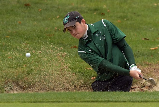 Sutton's Jack Moy was co-medalist at the Pod 3 golf championships, leading the Sammies to the team title.