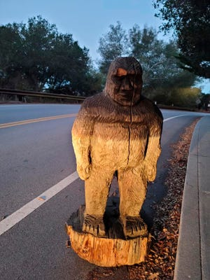 In this photo provided by the Scotts Valley Police Department is a figure of Bigfoot that officers found on a roadway in the mountains north of Santa Cruz in Scotts Valley, Calif., Thursday, Nov. 12, 2020. The Scotts Valley Police Department says it was a little banged up but will be returned to its rightful place at the Bigfoot Discovery Museum. The Santa Cruz County Sheriff's Office had urged people to keep their eyes peeled for the 4-foot-tall wooden statue after it was stolen from outside the tiny museum in nearby Felton on Monday. (Scotts Valley Police Department via AP)