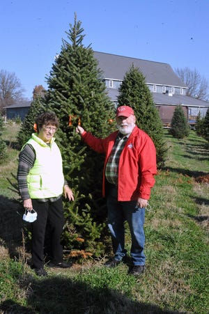 Rita and Roger Dush, owner of the Pine Tree Barn, stand beside a Christmas tree a customer purchased and tagged at the Pine Tree Barn. Customers can tag a tree to cut down later and take home to decorate.