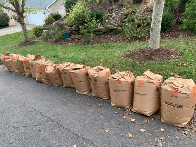 The city of Asheville auctioned off its leaf-sucking trucks back in 2011, switching to a system that requires residents to bag leaves for pickup.