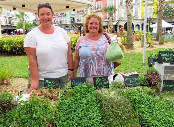 Small and home-based businesses like Salty Bird Farm populated opening day of the Gourmet Farmer's Market at the European Village on Sunday. Kara Knight, owner of Salty Bird Farm, bags up microgreens for Jill Ruland.