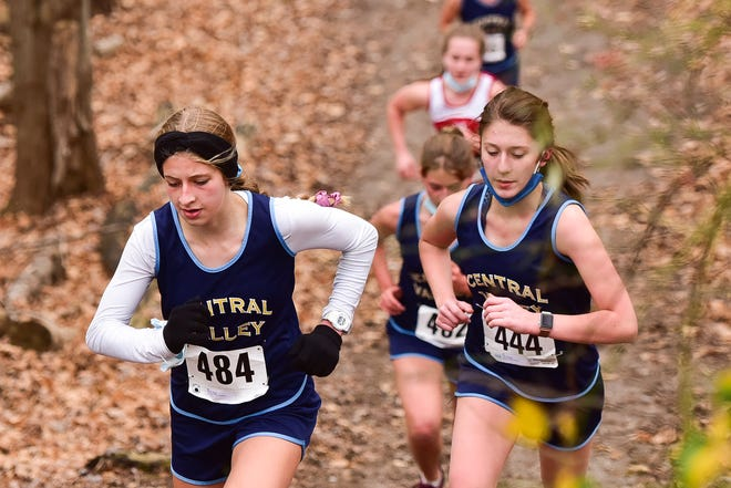 Runners compete during the Tri-Valley League Pioneer Division cross country championships Saturday at Vernon-Verona-Sherrill High School.