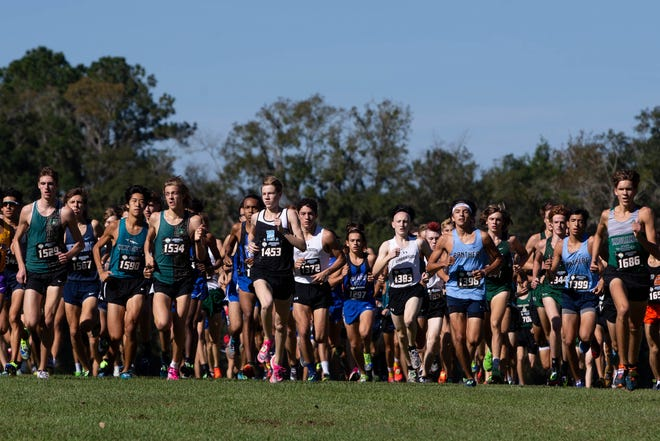 Runners compete in the Florida High School Athletic Association State Cross Country Championships at Apalachee Regional Park in Tallahassee on Saturday, Nov. 14, 2020.