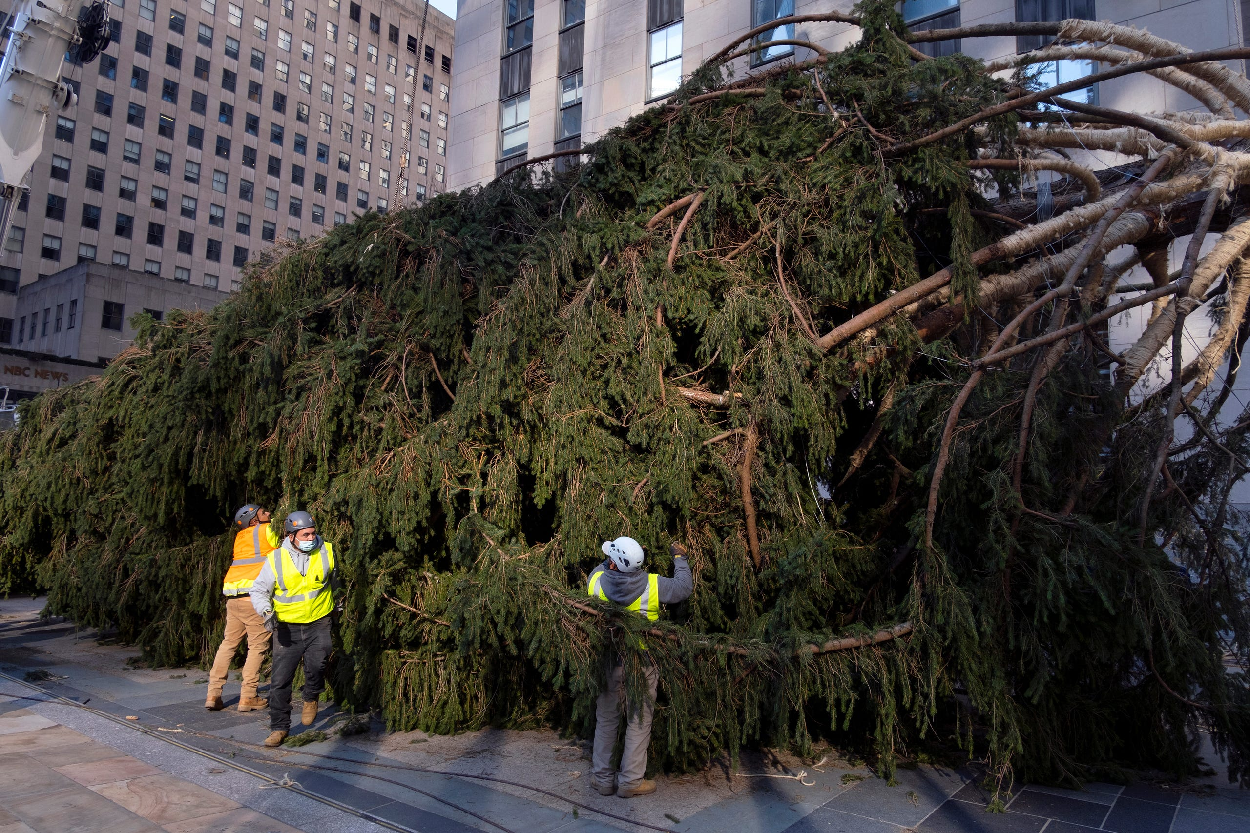 rockefeller christmas tree arrives in nyc photos of 75 foot beauty rockefeller christmas tree arrives in