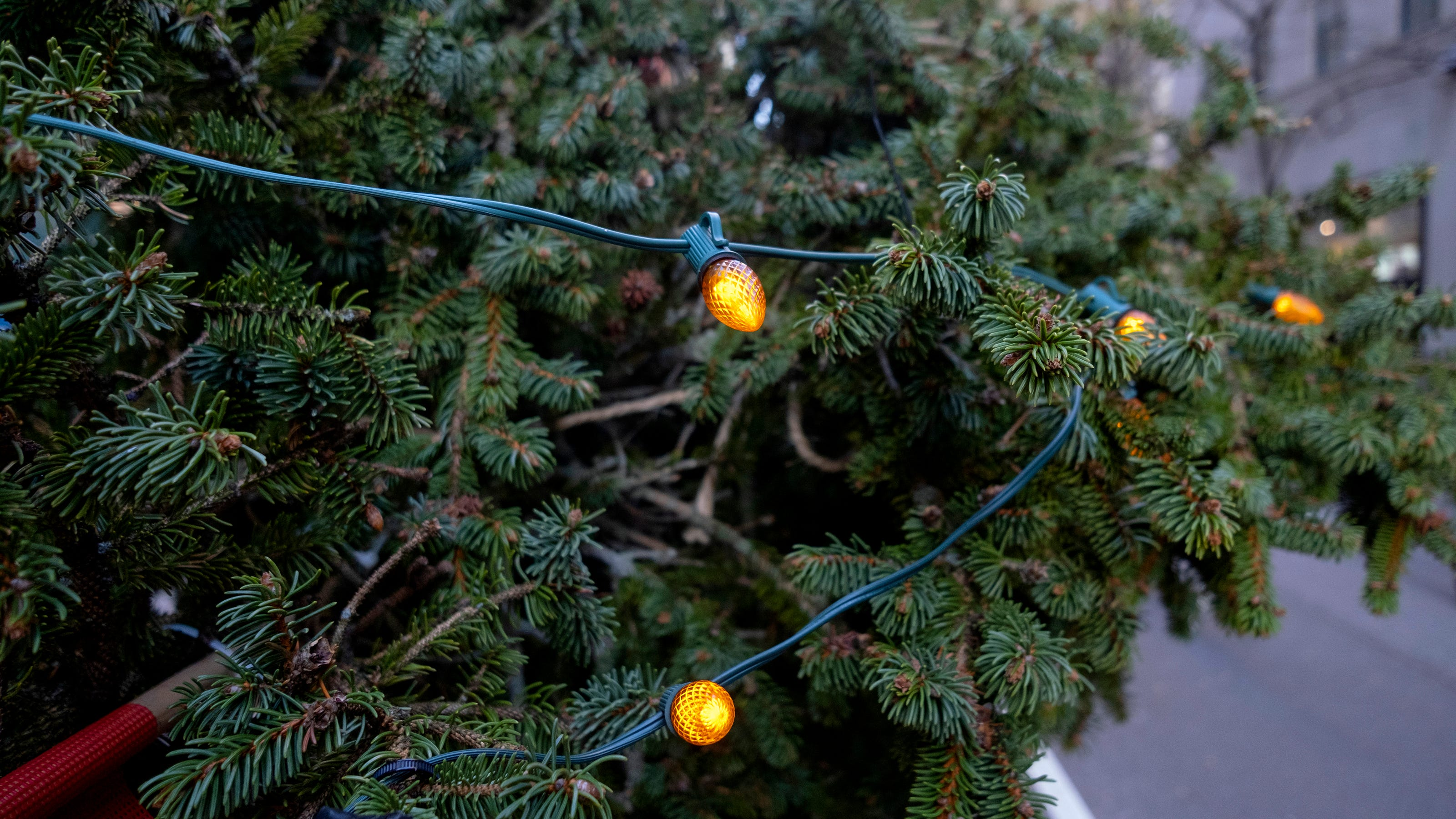 Christmas Events 2021 Nys Rockefeller Center Tree 2020 How To Watch The Lighting See The Tree