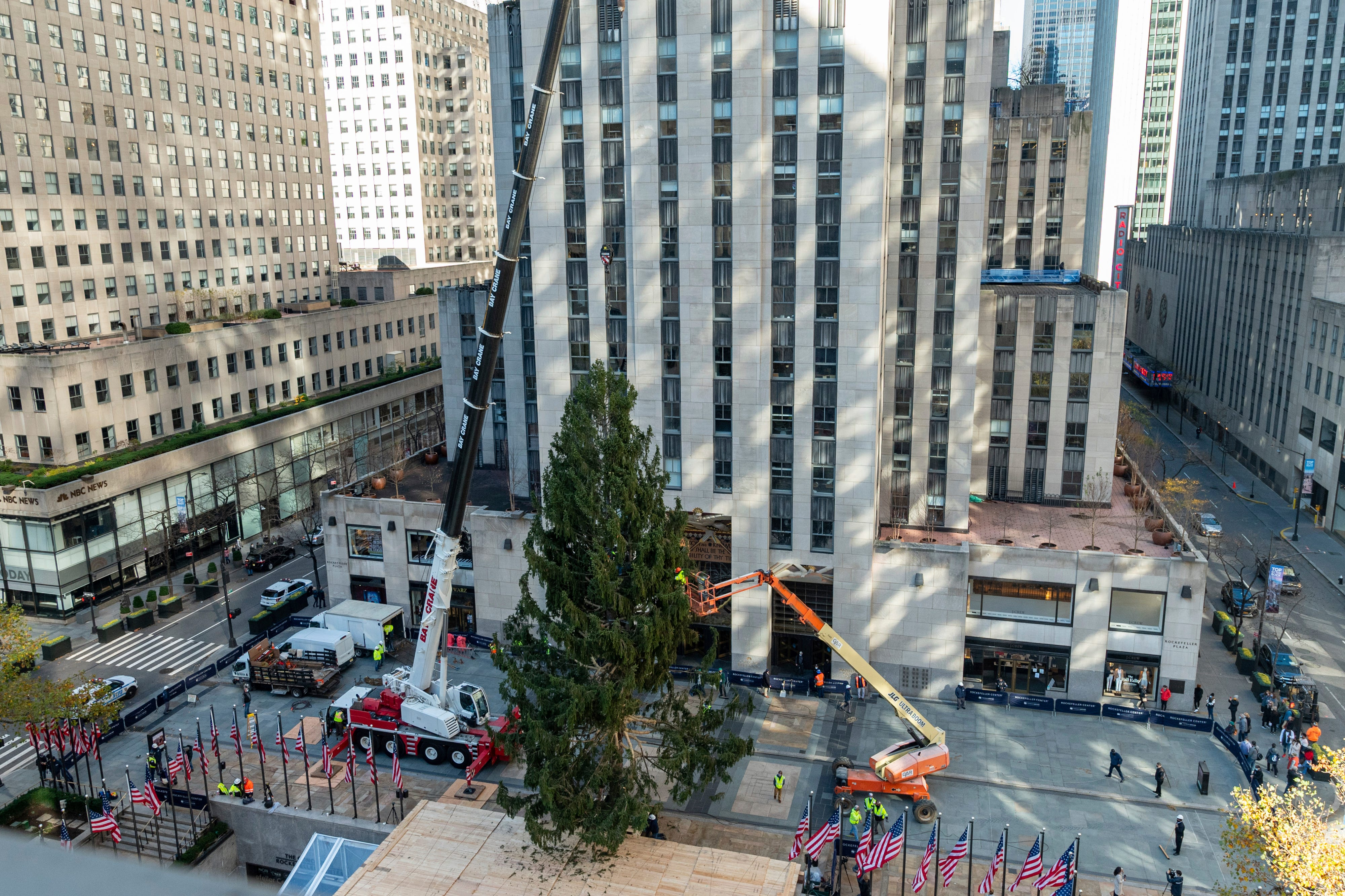 It's beginning to look a lot like Christmas! Rockefeller Christmas tree delivered to NYC