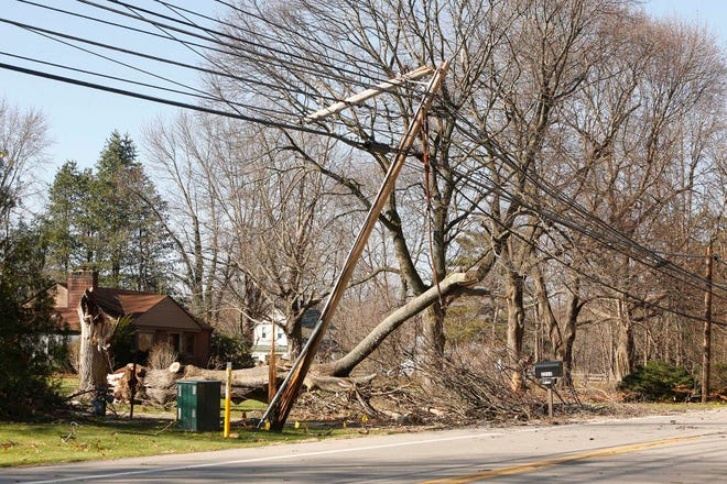 A fallen tree downed wires during Sunday's high winds. As a result, Copley Road west of White Pond Drive in Copley remained closed on Monday.