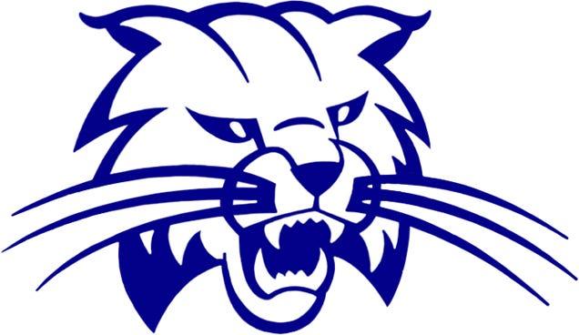 Cambridge Bobcat