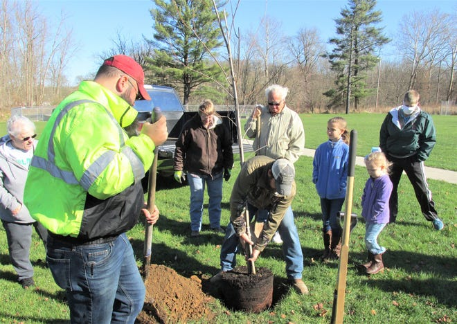 Clark Community Center board member Taylor Faunce places the sunset maple tree in the hole dug by Jim and Rick Schafer and some Doughty Valley 4-H members  at a memorial planting ceremony Monday in Clark. The tree was planted in memory of Jim Schafer's wife Deb, who was also Rick's mother.