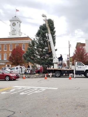 Greencastle's Christmas tree arrived on Center Square Thursday