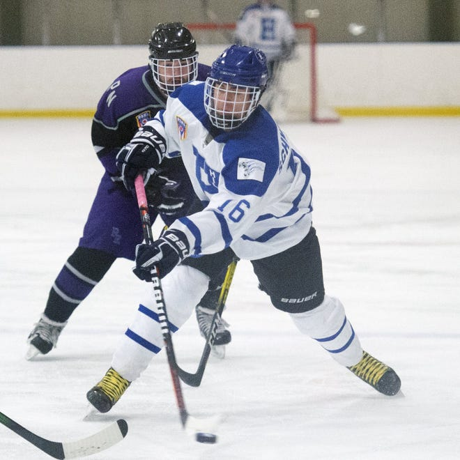 Senior forward James Schwinne III is among the top returnees for Hilliard and first-year coach Jake Trask. The Wildcats are coming off a season in which they earned their 12thconsecutive state tournament berth and won the Blue Jackets Cup.