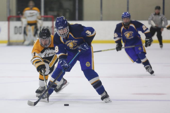 Upper Arlington junior forward Sam Cannon tries to poke the puck away from Olentangy's Noah Loris during a game last season. Cannon and the Golden Bears hope to contend for CHC-Red Division and district championships.