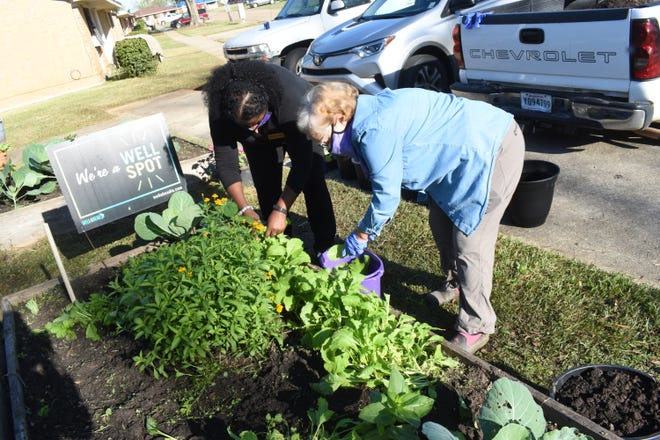Amanda White (left), Grant Parish Rural advocate for the Domestic Abuse Resistance Team (D.A.R.T,) and Frances Boudreaux, executive director of the Good Food Project, a program of the Food Bank of Central Louisiana, tend the Kugichagulia Garden. The garden located in the small yard next tothe D.A.R.T. office located on the Housing and Urban Development (HUD)property in Colfax.